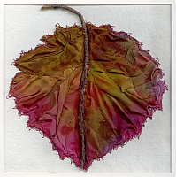 Autumn Leaf 1